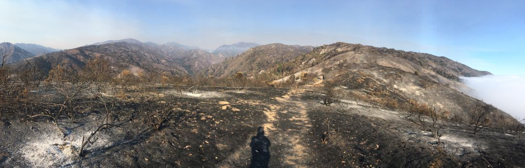 Highlands Ridge burned by Dolan Fire